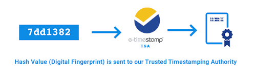 Hash value (Digital Fingerprint) is sent to our Trusted Timestamping Authority